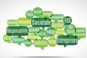 Consultant en stratégie RSE