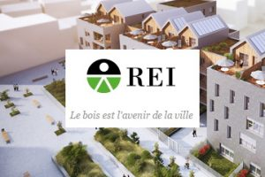 Directeur financier REI France