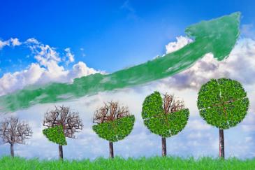 La finance verte à le vent en poupe