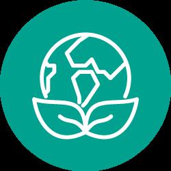 Responsabilité sociétale des entreprises et développement durable